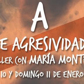 Taller con María Montero: A de Agresividad.